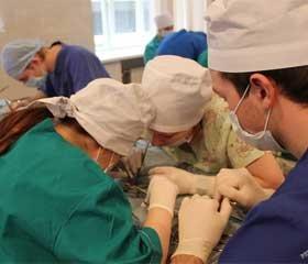 Експериментальне дослідження накопичення розчину  тріомбрасту в ділянці кишкового анастомозу після його  селективного внутрішньоартеріального введення