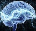 Клиническая эффективность нейротрофической терапии при инсультах и травмах головного мозга