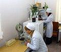 Епідеміологічні дослідження гіперурикемії та подагри серед населення міста Турпан у Сіньцзян-Уйгурському районі