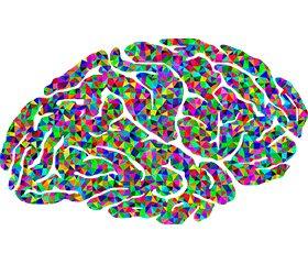 Нейрофизиологические  механизмы внимания