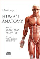 Human anatomy. Part 1. Locomotor apparatus: Study guide for the practical classes course