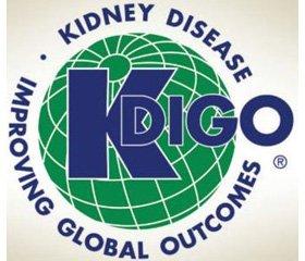 KDIGO 2017. Доповнення Керівництва  з клінічної практики з діагностики, визначення, запобігання та лікування хронічної хвороби нирок  із мінеральними та кістковими розладами (ХХН-МКР)