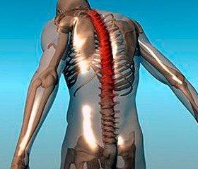 Ювенільний анкілозуючий спондиліт та ентезит-асоційований артрит