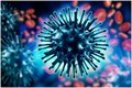 НПК «Актуальні інфекційні захворювання.  Сучасні аспекти клініки, діагностики, лікування та профілактики»